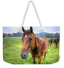 Horses In A Field Weekender Tote Bag by Jonny D