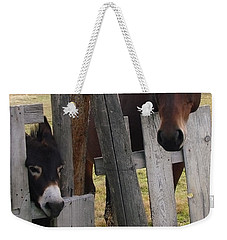 Weekender Tote Bag featuring the photograph Horsing Around by Athena Mckinzie