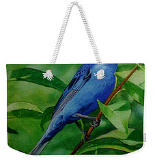Indigo Bunting Weekender Tote Bag by Ken Everett