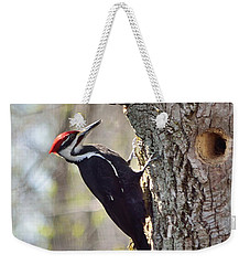 Male Pileated Woodpecker Weekender Tote Bag by David Porteus