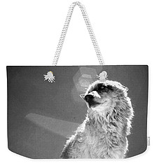 Medicine Wolf Weekender Tote Bag by Deborah Moen