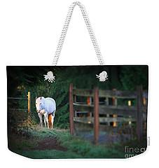 Self Assurance Weekender Tote Bag by Michelle Twohig