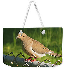 Morning Dove I Weekender Tote Bag by Debbie Portwood