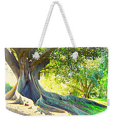Weekender Tote Bag featuring the photograph Morton Bay Fig Tree by Leanne Seymour