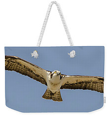 Weekender Tote Bag featuring the photograph Osprey In Flight by Dale Powell