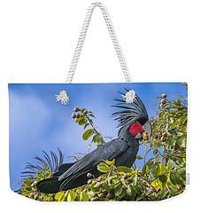 Palm Cockatoo Male Feeding On Nonda Weekender Tote Bag