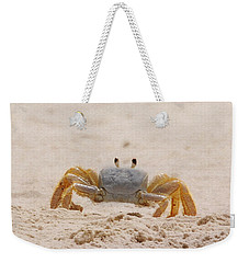Weekender Tote Bag featuring the photograph Portrait Of A Ghost Crab by Judy Hall-Folde