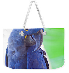 Weekender Tote Bag featuring the photograph Posie by Roselynne Broussard