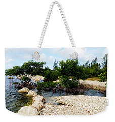 Weekender Tote Bag featuring the photograph Reclamation 6 by Amar Sheow