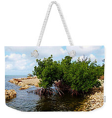 Weekender Tote Bag featuring the photograph Reclamation 7 by Amar Sheow