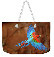 Red And Green Macaw Flying Weekender Tote Bag by Pete Oxford