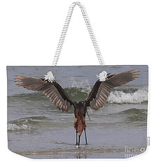 Reddish Egret Fishing Weekender Tote Bag by Meg Rousher