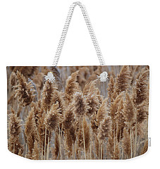 Wind Blown Redish Brown Plants Weekender Tote Bag