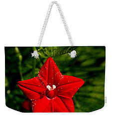 Scarlet Morning Glory Weekender Tote Bag