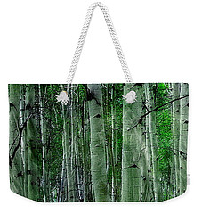 Weekender Tote Bag featuring the photograph Spectacular Aspens by Cindy Greenstein