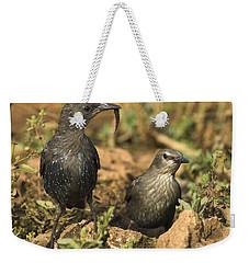 Starling Estornino Weekender Tote Bag