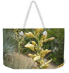 Weekender Tote Bag featuring the photograph 1 String Flowers    Photographed Las Vegas May 2014 by Navin Joshi