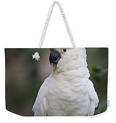 Sulphur-crested Cockatoo Displaying Weekender Tote Bag