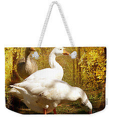 Weekender Tote Bag featuring the photograph Three Geese A Grazing by Chris Armytage