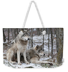 Timber Wolf Pair In Forest Weekender Tote Bag by Wolves Only