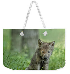 Timber Wolf Pup Weekender Tote Bag