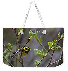 Townsends Warbler Weekender Tote Bag by Doug Lloyd