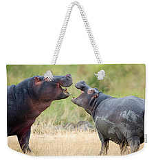 Two Hippopotamuses Hippopotamus Weekender Tote Bag by Panoramic Images