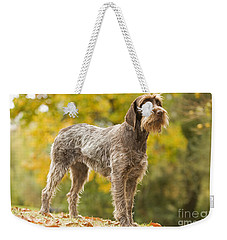 Wire-haired Pointing Griffon Weekender Tote Bag