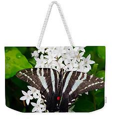 Zebra Swallowtail Weekender Tote Bag by Angela DeFrias