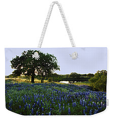 Weekender Tote Bag featuring the photograph 10 by Susan Rovira