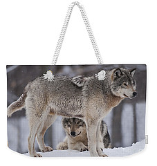 Timber Wolves  Weekender Tote Bag by Wolves Only