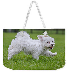 110801p130 Weekender Tote Bag by Arterra Picture Library