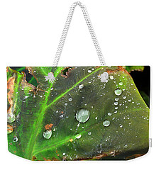 Untitled Weekender Tote Bag by Amy Williams