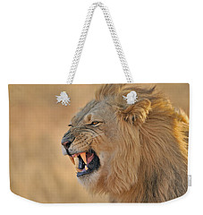 120118p081 Weekender Tote Bag by Arterra Picture Library