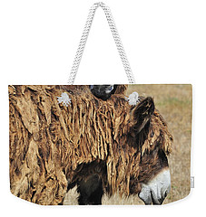 Weekender Tote Bag featuring the photograph 120920p028 by Arterra Picture Library