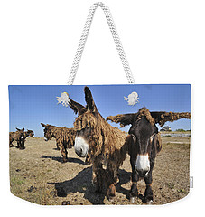 Weekender Tote Bag featuring the photograph 120920p029 by Arterra Picture Library