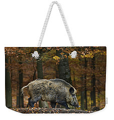 121213p284 Weekender Tote Bag by Arterra Picture Library
