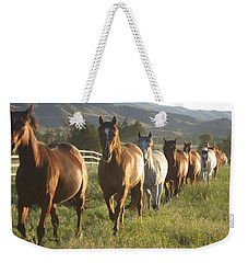 Montana  Big Sky Weekender Tote Bag