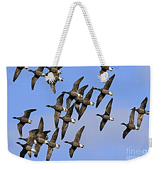 Weekender Tote Bag featuring the photograph 130109p166 by Arterra Picture Library