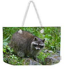 Weekender Tote Bag featuring the photograph 130201p045 by Arterra Picture Library
