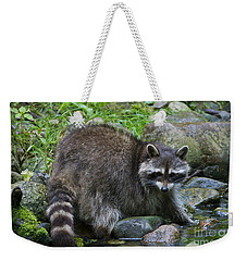 Weekender Tote Bag featuring the photograph 130201p047 by Arterra Picture Library