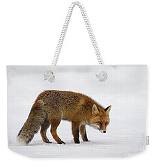 Weekender Tote Bag featuring the photograph 130201p051 by Arterra Picture Library