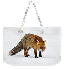 Weekender Tote Bag featuring the photograph 130201p052 by Arterra Picture Library
