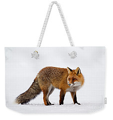 Weekender Tote Bag featuring the photograph 130201p054 by Arterra Picture Library