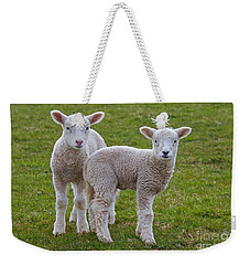 Weekender Tote Bag featuring the photograph 130201p091 by Arterra Picture Library