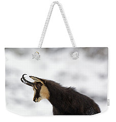 130201p229 Weekender Tote Bag by Arterra Picture Library