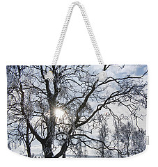 Weekender Tote Bag featuring the photograph 130201p341 by Arterra Picture Library