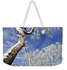 Weekender Tote Bag featuring the photograph 130201p343 by Arterra Picture Library