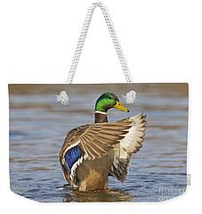 140314p301 Weekender Tote Bag