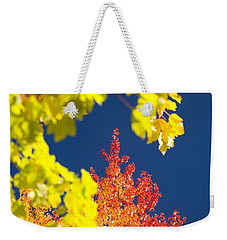 Garden Path - Geese And Sunflowers Weekender Tote Bag by John Bindon
